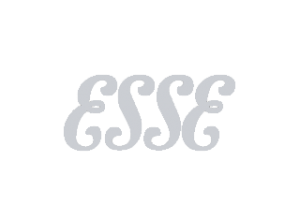 esse logo suppliers of stoves to Buckleys